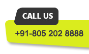 Bulk-SMS Call Us Now